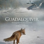 Crítica: Guadalquivir