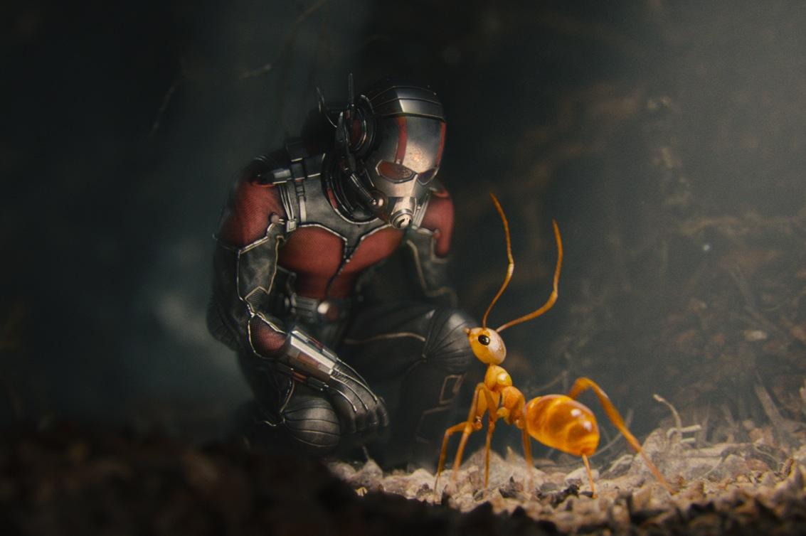 Ant-Man hormiga