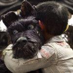 Crítica: Isla de perros, la nueva obra de arte stop-motion de Wes Anderson